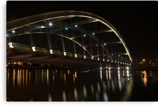 Frederick Douglass-Susan B. Anthony Memorial Bridge  by Jeff Palm Photography