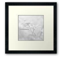 White V Framed Print