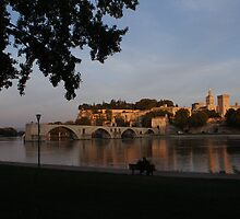 Avignon in Gold by fuji04