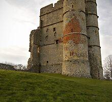 Donnington Castle by Robert Scammell