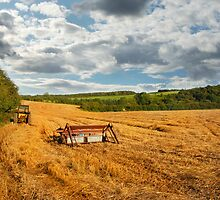 Harvest time ........... by WhartonWizard