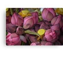 Lotus Lullaby Tablet Cases & Laptop Skins Canvas Print