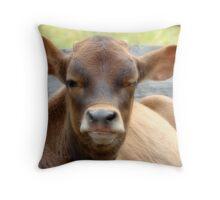 Bogart Baby! Throw Pillow