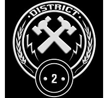 District 2 - Masonry Photographic Print