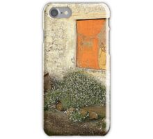 The Painted Window iPhone Case/Skin