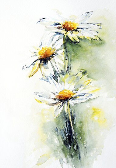 Daisy Chain by Stephie Butler