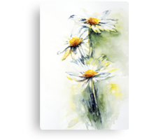 Daisy Chain Canvas Print