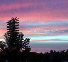 Early Evening Sky by fbkohli