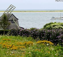 #499   Windmill On The Water   In Chatham, Massachusetts by MyInnereyeMike