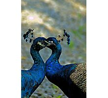 True Love Photographic Print