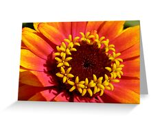Flowers in a Flower Greeting Card