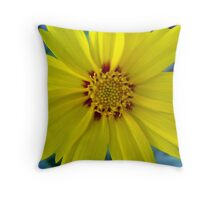 Coreopsis lanceolata Throw Pillow
