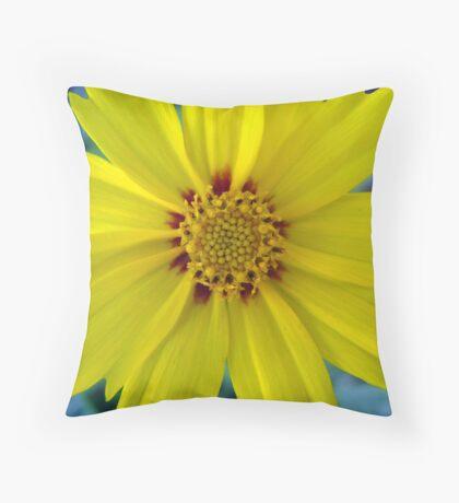 Coreopsis lanceolata Throw Pillow