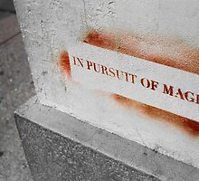 In Pursuit of Magic by Kristin Kelly
