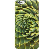 Spiral succulent iPhone Case/Skin