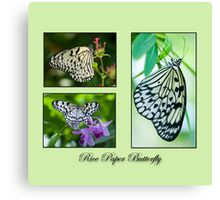 Rice Paper Butterfly Collage Canvas Print