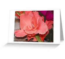 orange Gladiola Greeting Card