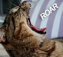 Hear me ROAR! by MDossat