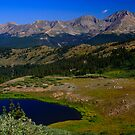 Cottonwood Pass Day by Paul Gana