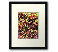 Colorful Plant Framed Print