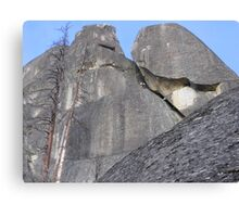 Up the Rock Canvas Print