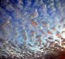 Morning Sky by Melaina Varble