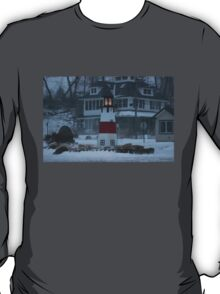 Snowy Afternoon at the Bluff T-Shirt