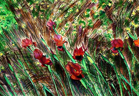 Irises From the Field with Love by Nira Dabush
