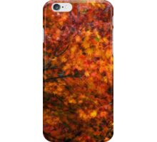 Autumn tones of a Japanese Maple #2 iPhone Case/Skin