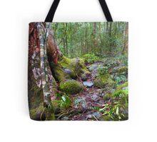 Gloucester Green Tote Bag