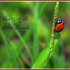 ~ Sharing A Little News... ~ by WesternDreamer