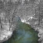 Snowy Creek by LizzieMorrison