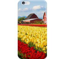 Tulip Fest iPhone Case/Skin