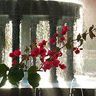 Fountain  by weberwanjek   artography
