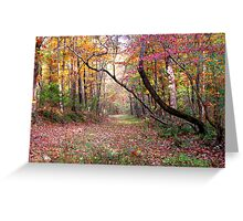 Forest Path,  Arkansas Ozark Mountains Greeting Card