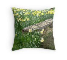 Scented Seating! Throw Pillow