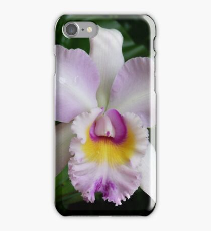 An Unknown Beauty iPhone Case/Skin