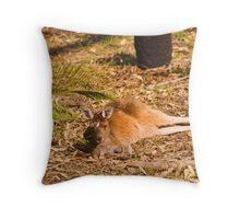 Lazy roo Throw Pillow