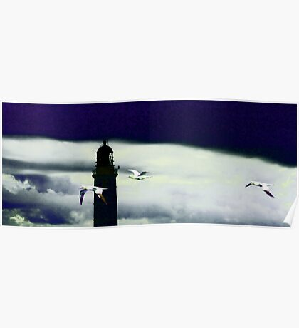 Lighthouse & Gannets Poster