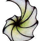 Art Shell by peyote
