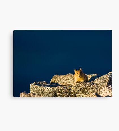 See You Next Summer Canvas Print