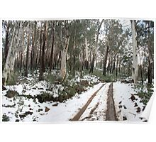 Snow on Eskdale Spur Track, Victoria Poster