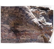 Lizard on Rhyolite Poster
