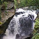 Aberdulais Falls1 by Nala