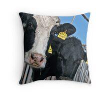 Cows with Attitude Throw Pillow
