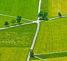 Bavarian Meadows (Alan Copson ©) by Alan Copson