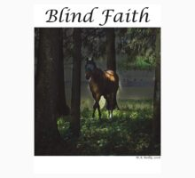 Blind Faith by Mary Ann Reilly