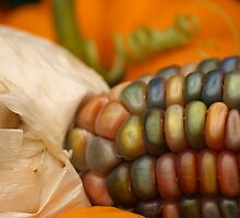 Autumn's Bounty I by Dawne Olson