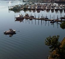 Oyster Point Docks from Above by Steve Keefer