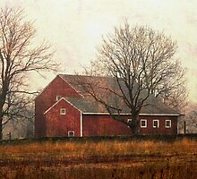 Red Barn by SylviaCook